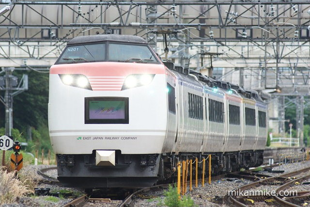 DSC05305