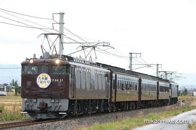 DSC05217