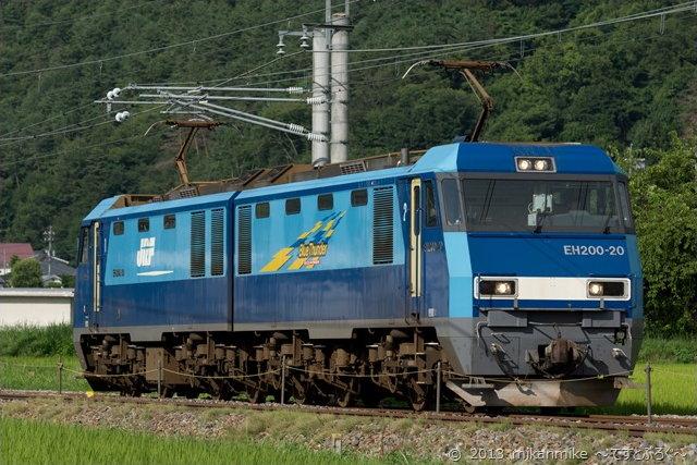 DSC07991