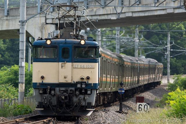 DSC01255