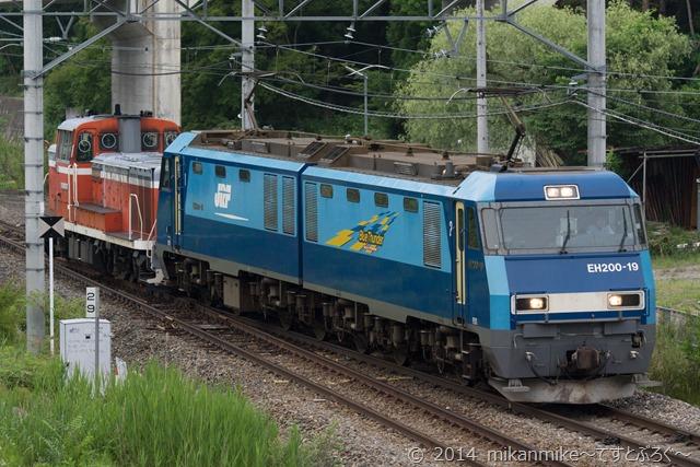DSC01381